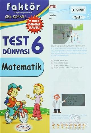 6. Sınıf Matematik Test Dünyası
