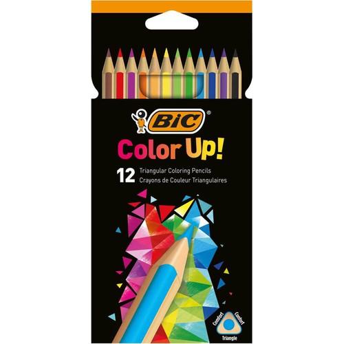 Bic Kuru Boya Color Up 12 Lİ 950527