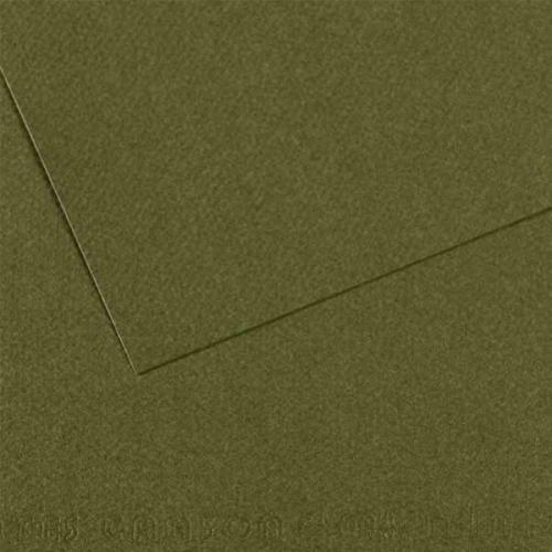 Canson Fon Kartonu (Dokulu) Mı-Teıntes 25 Lİ 50x65 160 GR 448 Sea Green 200331454