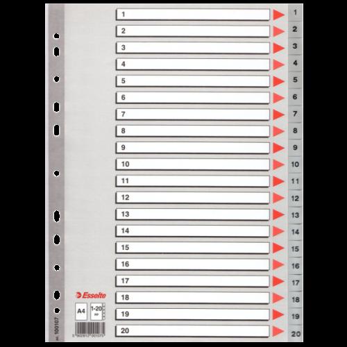 Esselte Seperatör 1-20 Rakamlı Plastik A4 100107