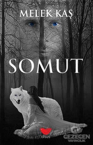 Somut