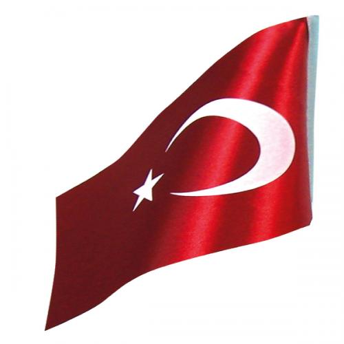 Vatan Masa Bayrağı Türk Çiftli 15x22.5 VT201