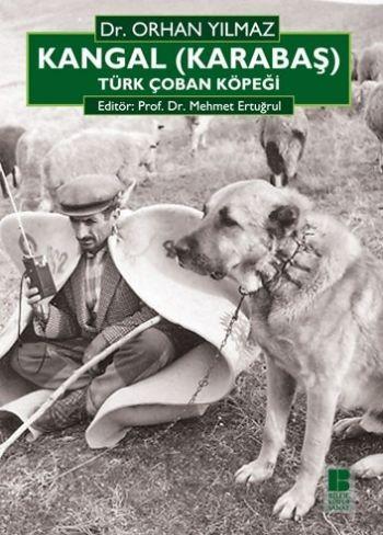 Kangal Karabaş Türk Çoban Köpeği