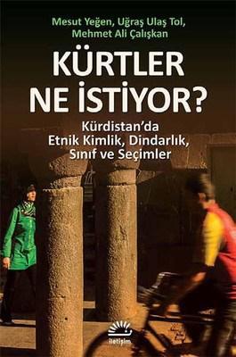Kürtler Ne İstiyor Kürdistanda Etnik Kimlik, Dindarlık, Sınıf ve Seçimler
