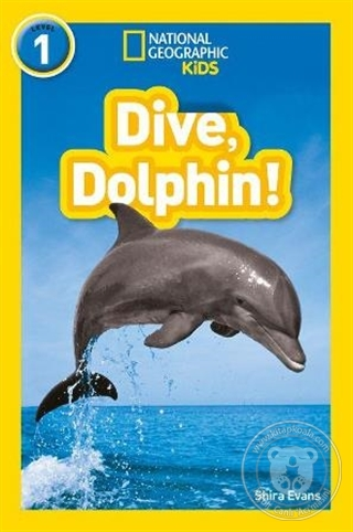 Dive, Dolphin! - National Geographic Readers 1