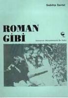 Roman Gibi Demokrasi Mücadelesinde Bir Kadın