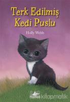 Terk Edilmiş Kedi Puslu