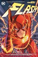 The Flash Cilt 1 - İleri