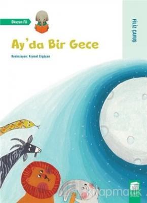 Ay'da Bir Gece