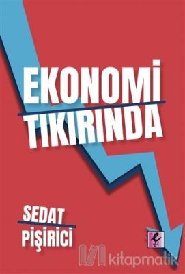 Ekonomi Tıkırında Sedat Pişirici