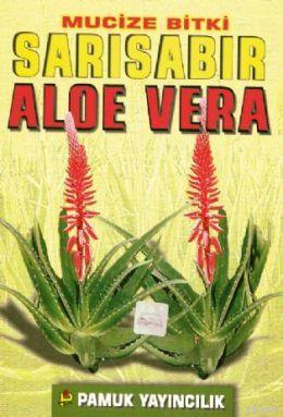 Mucize Bitki: Sarısabır Aloe Vera (Bitki-017)