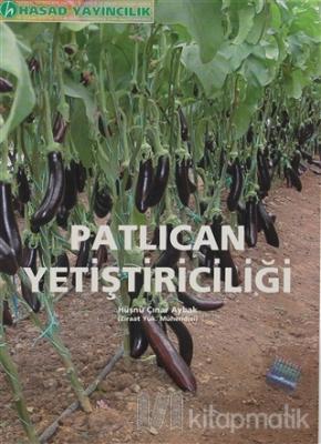 Patlıcan Yetiştiriliciliği Hüsnü Çınar Aybak
