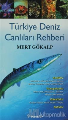 Türkiye Deniz Canlıları Rehberi (Ciltli)