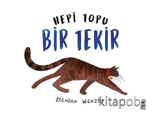 Hepi Topu Bir Tekir - Brendan Wenzel - kitapoba.com