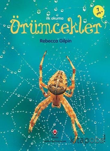 İlk Okuma - Örümcekler - Rebecca Gilpin - kitapoba.com