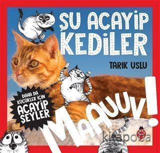 Şu Acayip Kediler - Özkan Öze - kitapoba.com