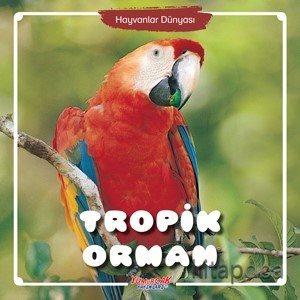 Tropik Orman / Hayvanlar Dünyası - Kollektif - kitapoba.com
