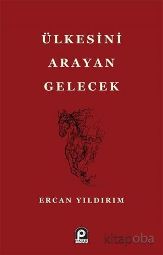 Ülkesini Arayan Gelecek - Ercan Yıldırım - kitapoba.com
