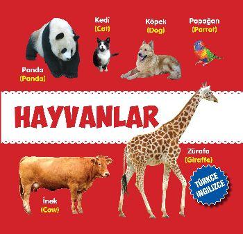 Hayvanlar Türkçe-İngilizce