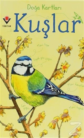 Doğa Kartları - Kuşlar