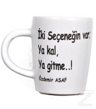 Özdemir Asaf Bardak