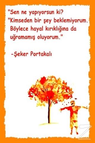 Şeker Portakalı (Poster)