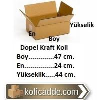 Dopel Koli 47x24x44 cm.