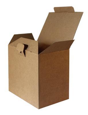 Kilitli Kapaklı Kutu 22x15x20 cm-KoliCadde