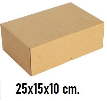 Kilitli Karton Kutu 25x15x10 cm