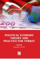 Political Economy Theory and Practice for Turkey