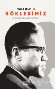 Köklerimiz: Afro - Amerikalılar'ın Tarihi (Ciltli)