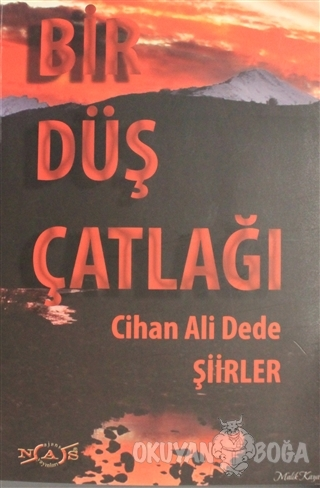 Bir Düş Çatlağı - Cihan Ali Dede - Nas Ajans Yayınları