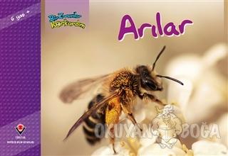 Bir Zamanlar Korkardım - Arılar - Elaine Pascoe - TÜBİTAK Yayınları