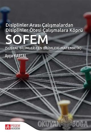 Disiplinler Arası Çalışmalardan Disiplinler Ötesi Çalışmalara Köprü SOFEM