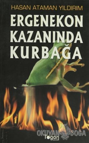 Ergenekon Kazanında Kurbağa - Hasan Ataman Yıldırım - Togan Yayıncılık