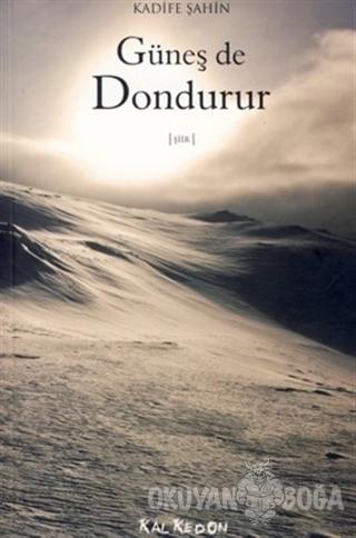 Güneş de Dondurur - Kadife Şahin - Kalkedon Yayıncılık