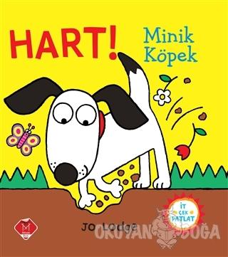 Hart! Minik Köpek - Jo Lodge - Mikado Yayınları