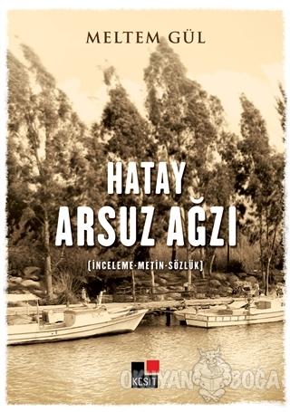 Hayat Arsuz Ağzı - Meltem Güler - Kesit Yayınları