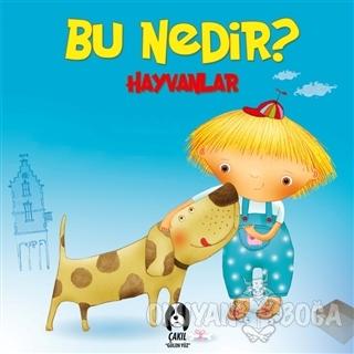 Hayvanlar - Bu Nedir? (Ciltli) - Elif Tahmiscioğlu - Çakıl Yayınları