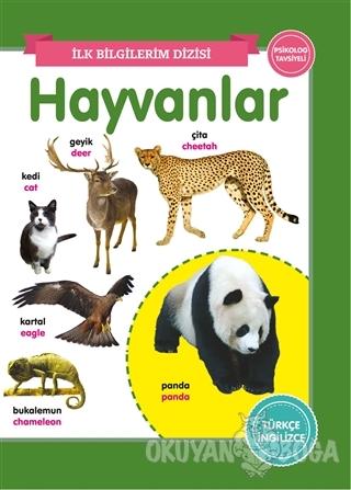 Hayvanlar – İlk Bilgilerim Dizisi - Kolektif - 0-6 Yaş Yayınları