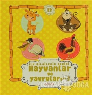 Hayvanlar ve Yavruları 3 - İlk Bilgilerim Serisi 12 (Ciltli) - Kolekti