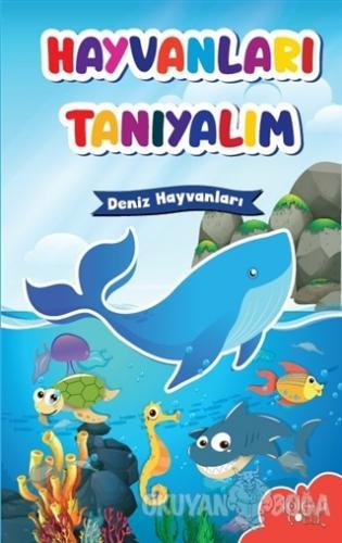 Hayvanları Tanıyalım - Deniz Hayvanları