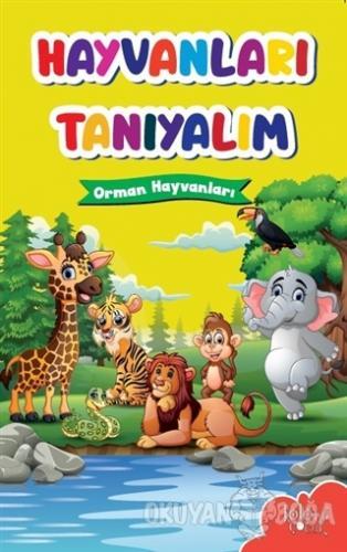 Hayvanları Tanıyalım - Orman Hayvanları