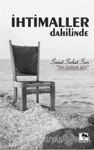 İhtimaller Dahilinde - Samet Serhat Sarı - Çınaraltı Yayınları