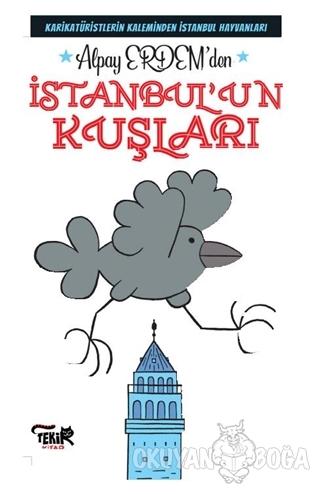 İstanbul'un Kuşları - Alpay Erdem - Tekir Kitap