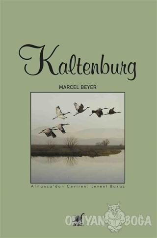 Kaltenburg - Marcel Beyer - Ayrıntı Yayınları