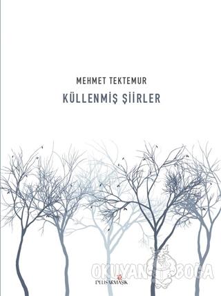 Küllenmiş Şiirler - Mehmet Tektemur - Delisarmaşık Yayınları