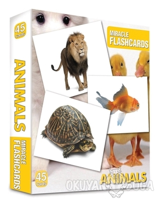 Miracle Flashcards - Animals Box 45 Cards