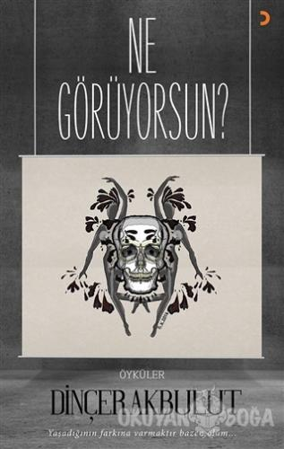 Ne Görüyorsun? - Dinçer Akbulut - Cinius Yayınları