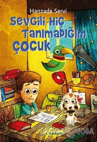 Sevgili Hiç Tanımadığım Çocuk - Hanzade Servi - Tudem Yayınları